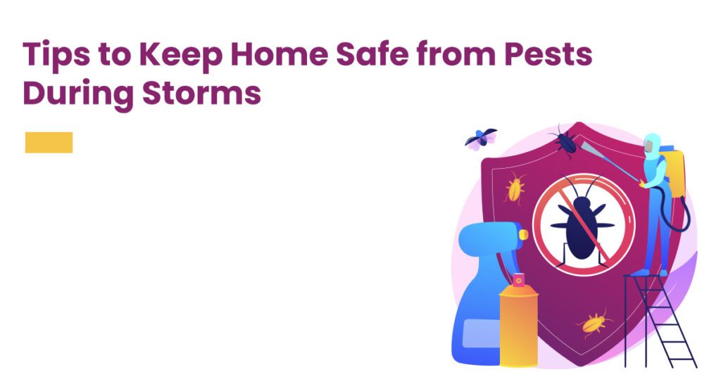 Pest control tips for home